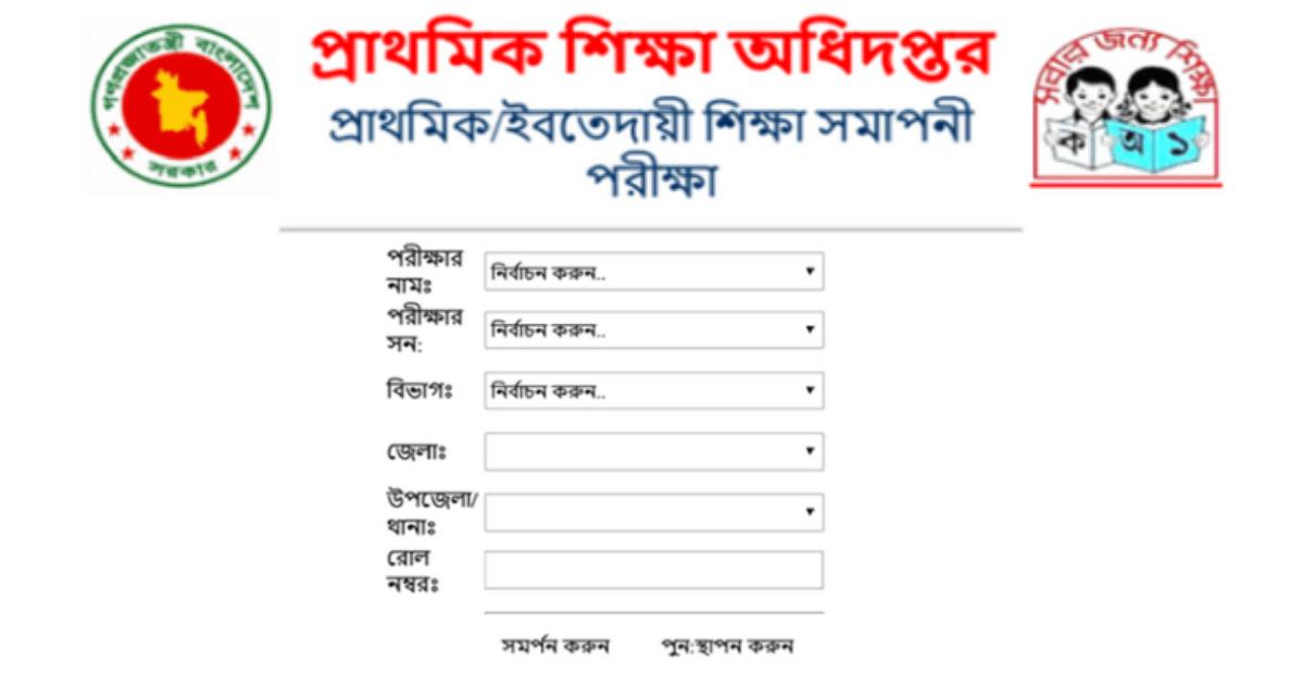 dpe result 2019