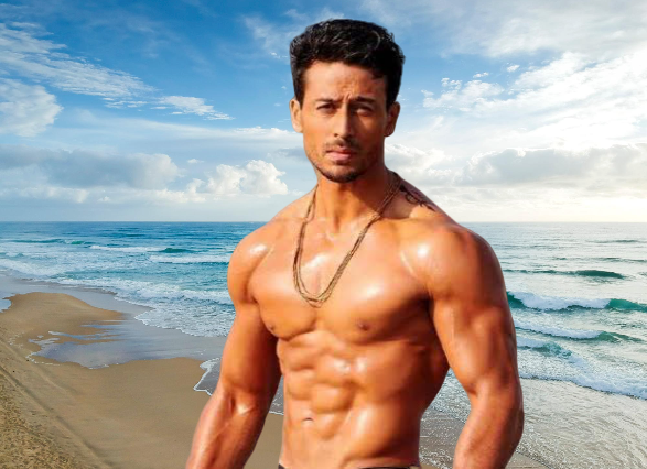 baaghi 3 hd movie download